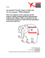White Elephant Report